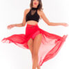 Dance Skirt